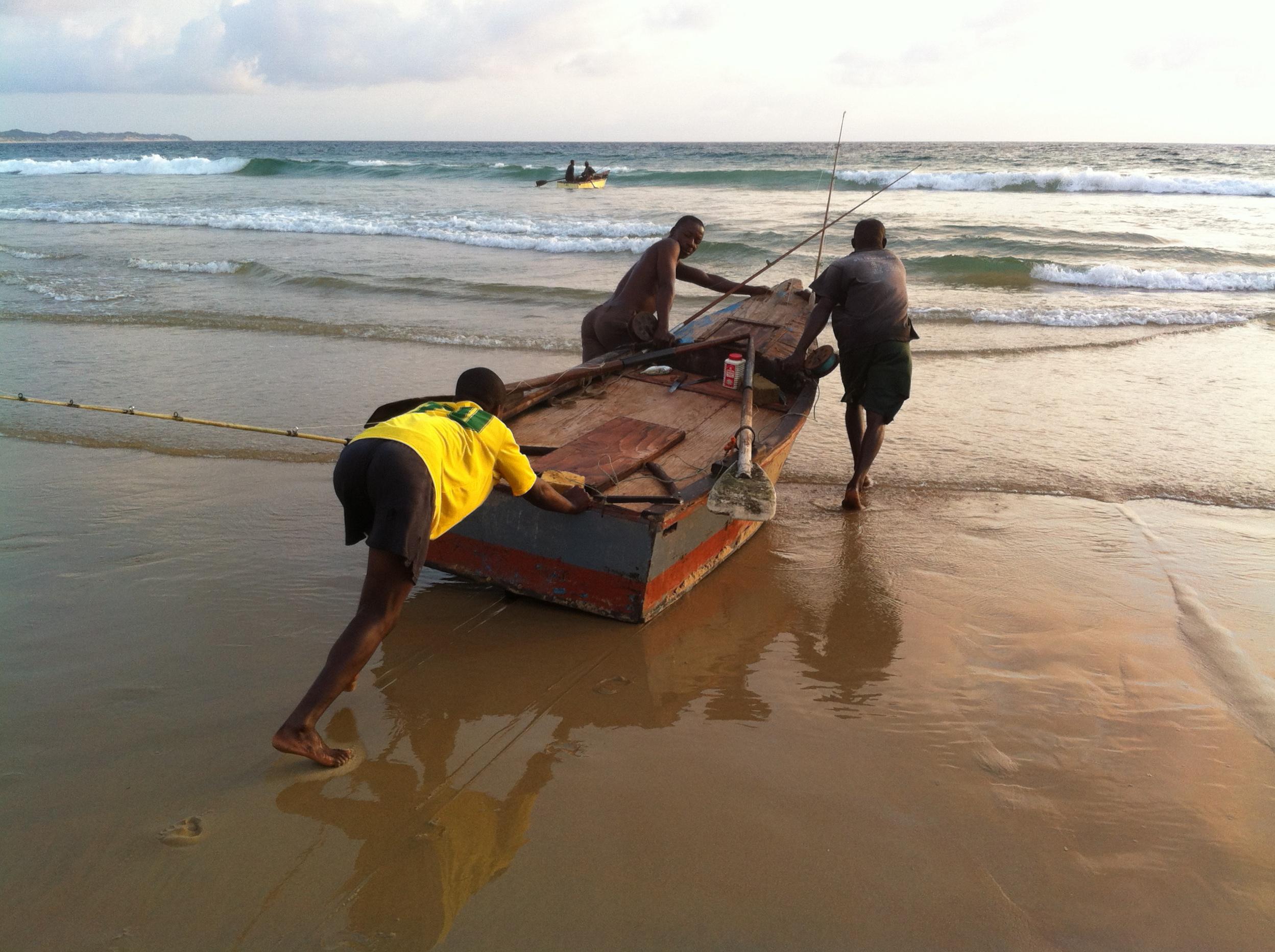 Ocean & Safari August 2014