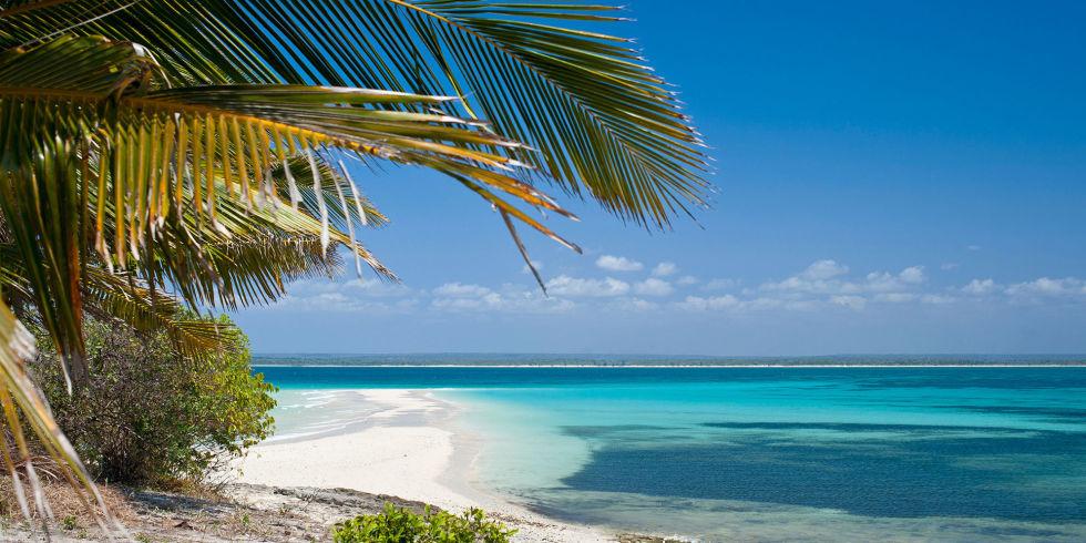 Sabbia bianca e palme